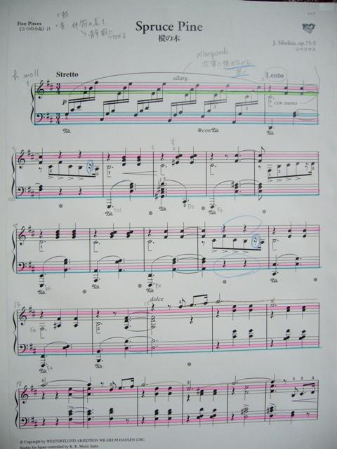 シューマンを弾きたい_f0079085_23414.jpg