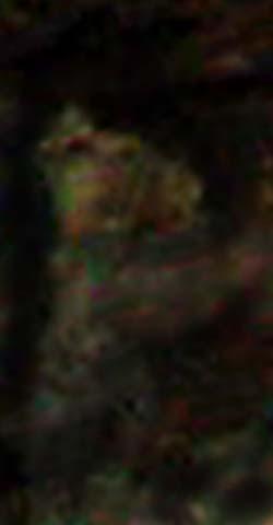 e0103408_1940114.jpg