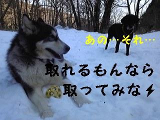 f0148927_23141016.jpg