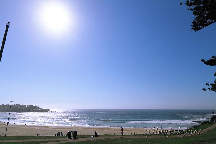 Bondi Beach_f0084337_6261119.jpg