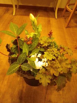 お花のお届け。_e0086738_19404585.jpg