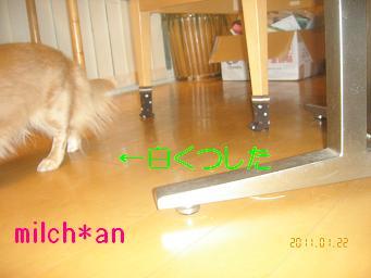 b0115642_2014267.jpg