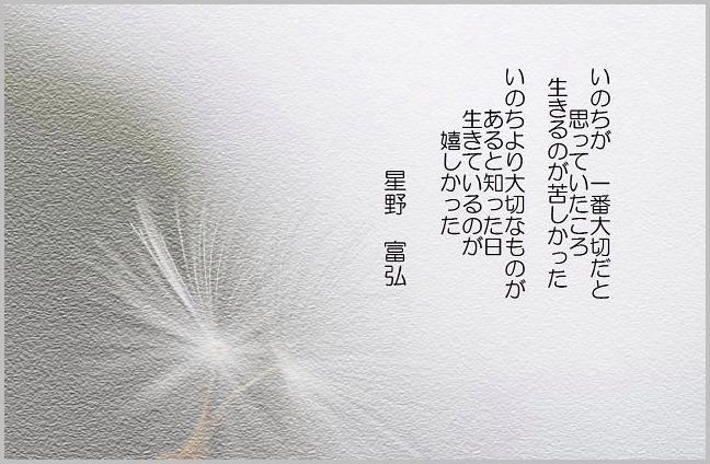 f0214648_22233880.jpg