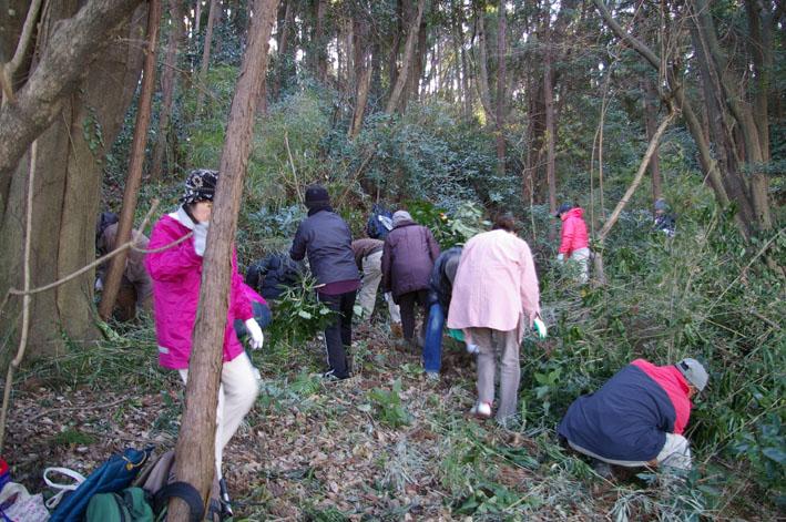 30名参加、六国見山森林公園の手入れスタート(1・22)_c0014967_1923523.jpg