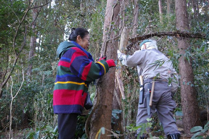 30名参加、六国見山森林公園の手入れスタート(1・22)_c0014967_19521463.jpg