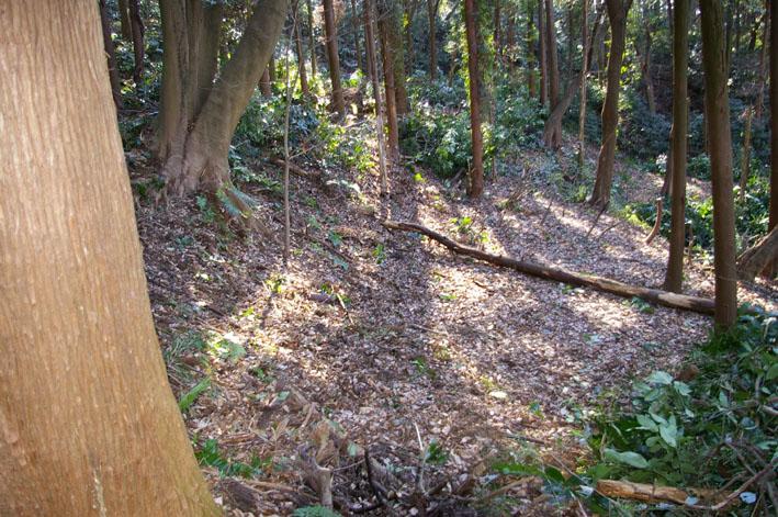 30名参加、六国見山森林公園の手入れスタート(1・22)_c0014967_20134639.jpg