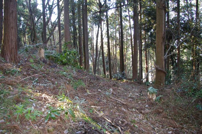 30名参加、六国見山森林公園の手入れスタート(1・22)_c0014967_2091337.jpg