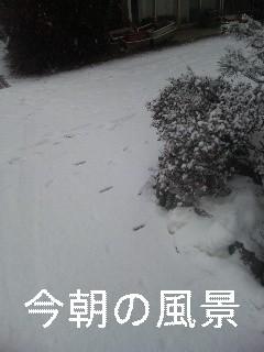 今朝の空_d0148408_7225212.jpg
