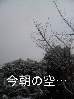 今朝の空_d0148408_7225252.jpg