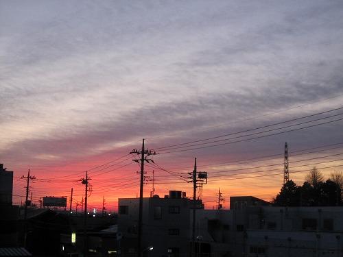 きょうの空 と アマリリス。_b0157216_1836418.jpg