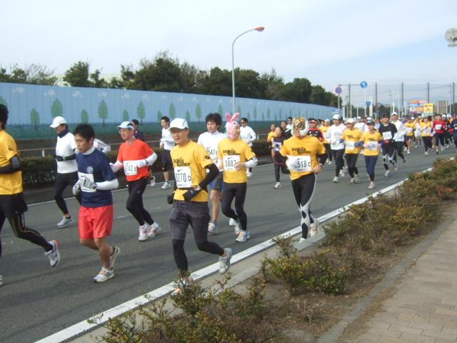第5回湘南国際マラソン......湘南大橋付近!_b0137932_13244554.jpg