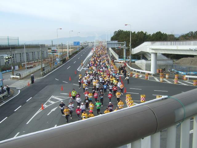 第5回湘南国際マラソン......湘南大橋付近!_b0137932_13252485.jpg