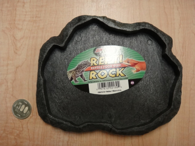 ZOOMED REPTIAROCK FOODDISH_e0181866_150460.jpg