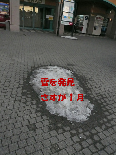 e0199769_11263420.jpg