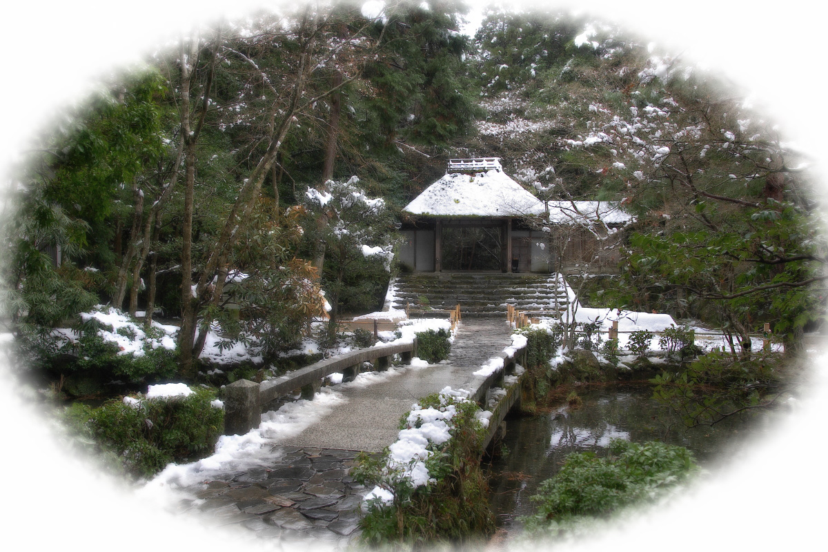 雪景色 <法然院>_f0021869_23154922.jpg