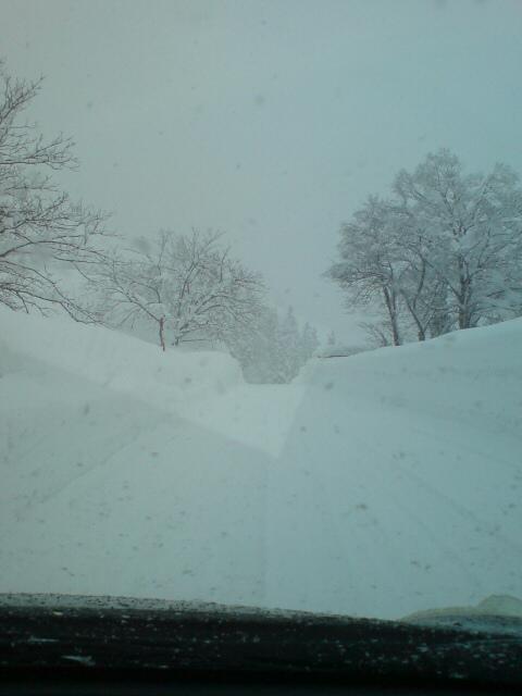 雪・雪・雪・雪・・・_d0182179_20475265.jpg