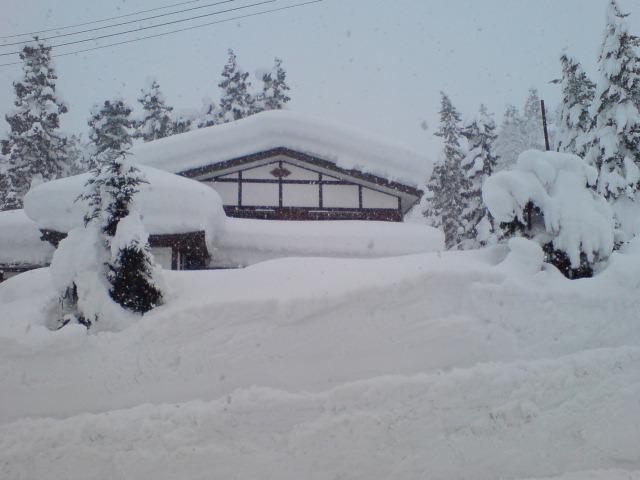 雪・雪・雪・雪・・・_d0182179_2048022.jpg