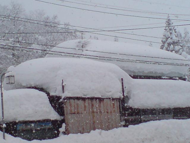 雪・雪・雪・雪・・・_d0182179_20481443.jpg