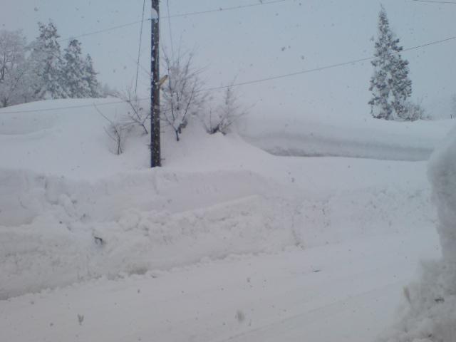 雪・雪・雪・雪・・・_d0182179_20482619.jpg