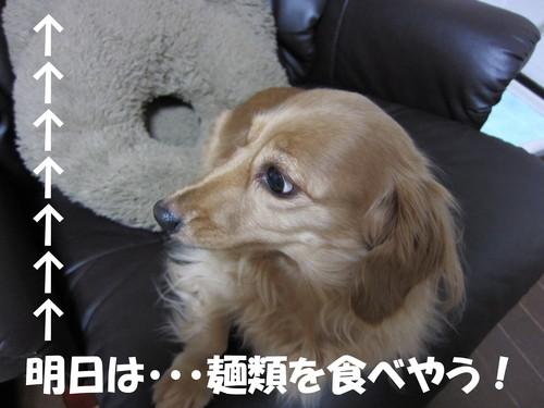 b0200291_20245454.jpg