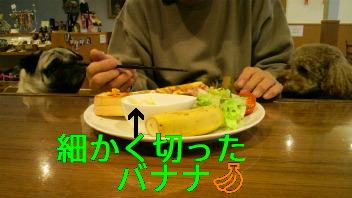 f0175397_2227889.jpg