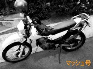 a0168007_0124743.jpg