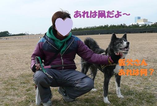 f0121712_13383281.jpg