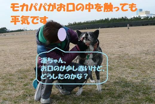 f0121712_13384814.jpg
