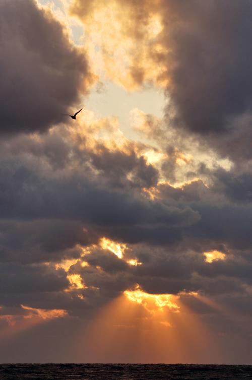 天使の梯子_e0162117_8471947.jpg