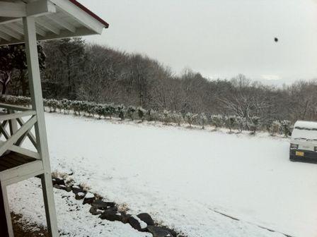 グレドゥシャからの雪情報_c0134122_108488.jpg
