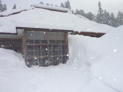 豪雪二週間以上降り続く_b0084826_8104033.jpg