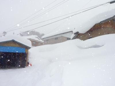 豪雪二週間以上降り続く_b0084826_811431.jpg