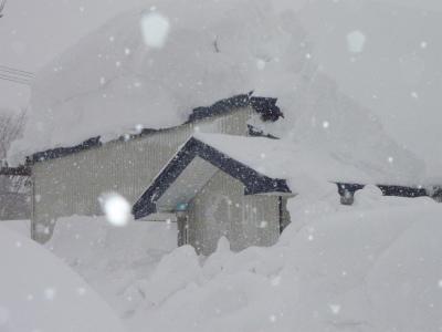豪雪二週間以上降り続く_b0084826_8165127.jpg