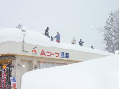 豪雪二週間以上降り続く_b0084826_819642.jpg