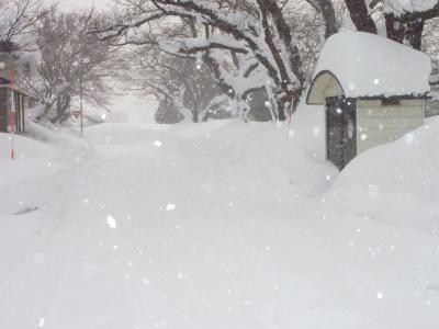 豪雪二週間以上降り続く_b0084826_8291453.jpg