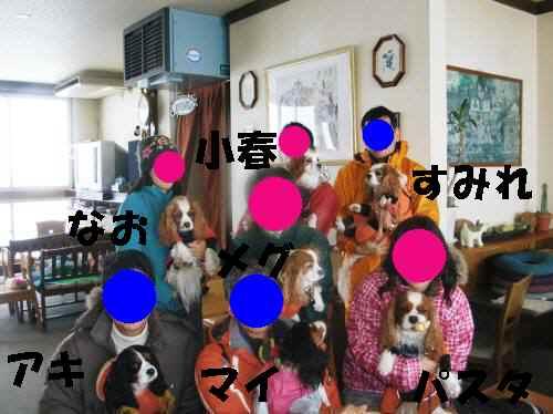 b0165139_20375941.jpg