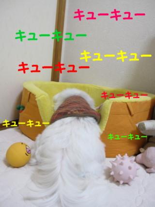 b0193480_122855.jpg