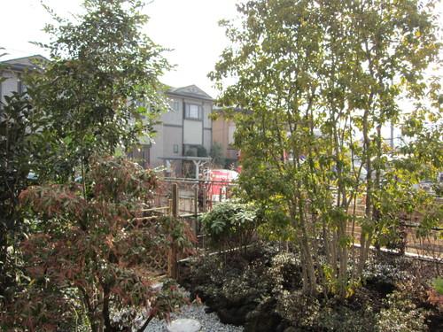 お庭造り 完成!_b0200291_20125465.jpg