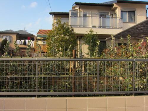 お庭造り 完成!_b0200291_2233187.jpg