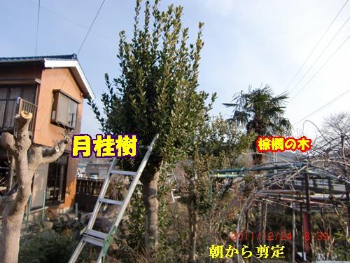 b0205192_15355421.jpg