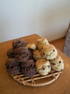 チョコと豆_a0134394_103999.jpg