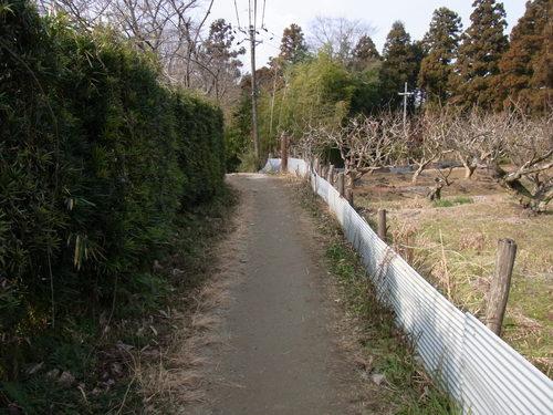 奈良~_f0213410_1438069.jpg