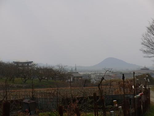 奈良~_f0213410_14551254.jpg