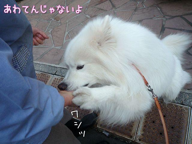 大好きおかみさん_c0062832_1753199.jpg