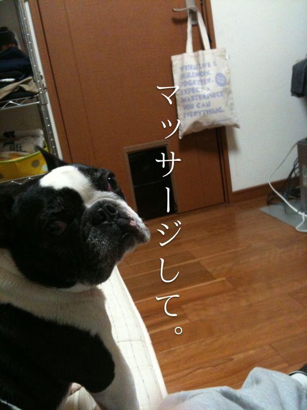 b0149736_204794.jpg