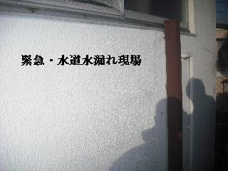 緊急工事_f0031037_2194712.jpg