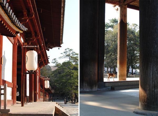 そうだ京都と奈良、行こう。 三日目_a0003650_2319373.jpg