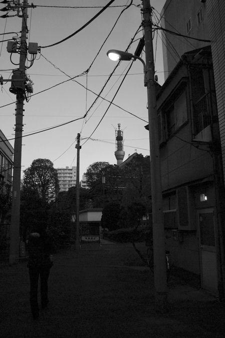 東京散歩 スカイツリーのある風景_c0181552_7345413.jpg