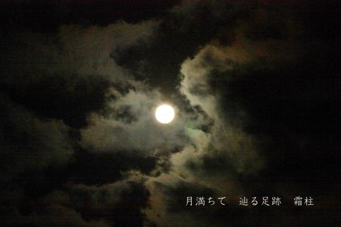 b0146278_930207.jpg