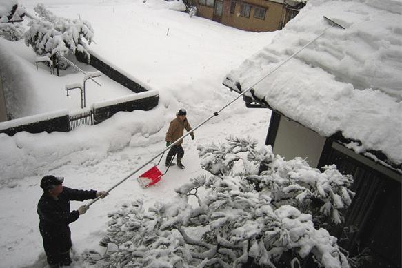 降り積もる雪 雪 雪 また雪よ 2010.01.25_c0213599_22221465.jpg